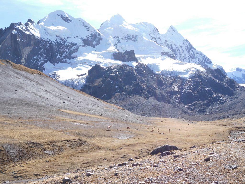 Hatunuma + Callangate, 6.100, Peru, Sept. 2012